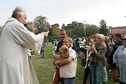 Sabato 11 ottobre benedizione degli animali
