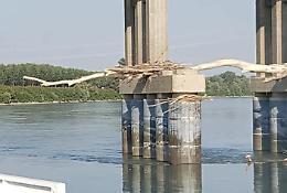 Allarme tronchi sotto i piloni del ponte