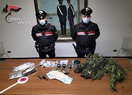 Emporio interregionale della droga smantellato dai carabinieri