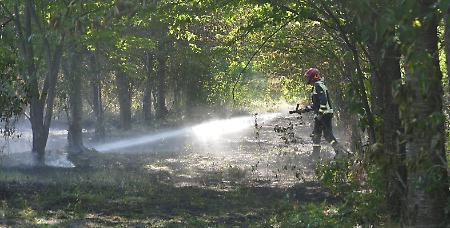 Incendio al Fenilone, i pompieri domano le fiamme