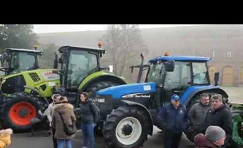 VIDEO Folla in piazza per S. Antonio: tradizione viva