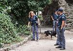 Blitz anti-droga ai giardini di piazza Roma