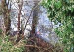 Le immagini dell'incendio alla baracca di legno