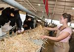 FOTO Giovani agricoltori con i loro animali: gli scatti più belli delle Fiere Zootecniche