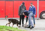FOTO I controlli della polizia con il cane antidroga alla stazione di Cremona