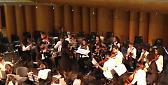 Musica All'Auditorium Arvedi i 'CRescendo' e 'Gli Archetti di Cremona'