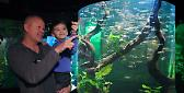 Festa del papà e Notte all'Acquario a Gardaland Sea Life Aquarium