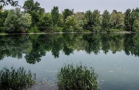 Laghetto dei Riflessi, tuffi vietati: presidio delle guardie ecologiche