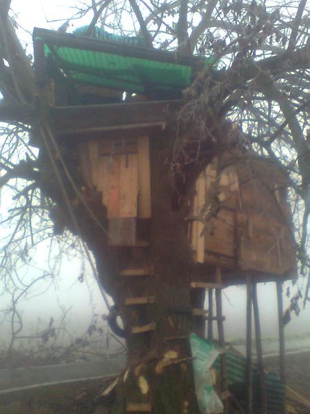 Il sogno della casa sull 39 albero s 39 infrange contro la legge for Planimetrie della casa sull albero