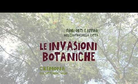 VIDEO Le Invasioni Botaniche 2020: lo spettacolo di fiori e colori in un minuto