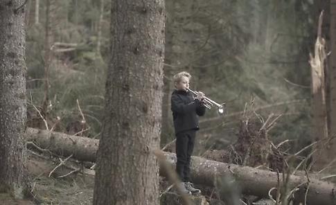 VIDEO L'omaggio di Mario Brunello, l'orchestra Villa Lobos e Paolo Rumiz alla 'foresta dei violini' a Paneveggio