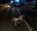 Tragico scontro sulla Quinzanese, muore ragazza di 15 anni